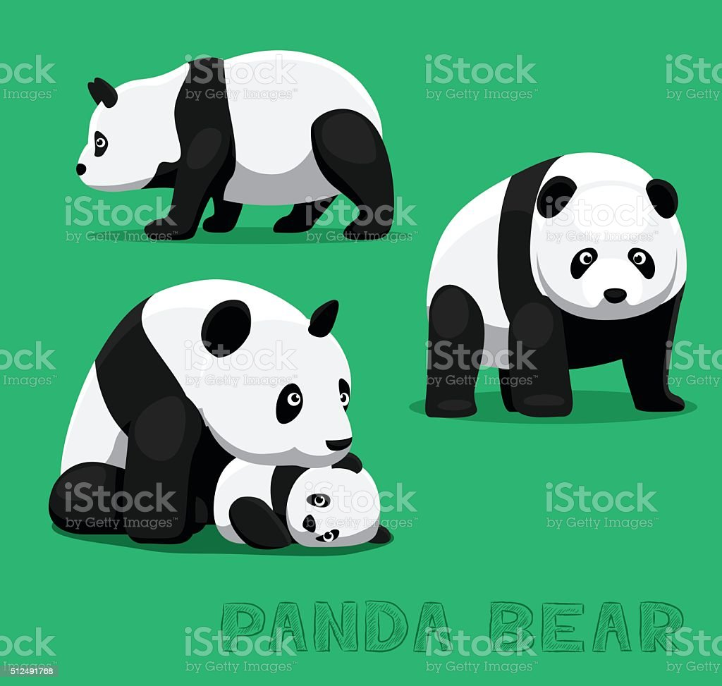 Bear Panda Bear Cartoon Vector Illustration vector art illustration