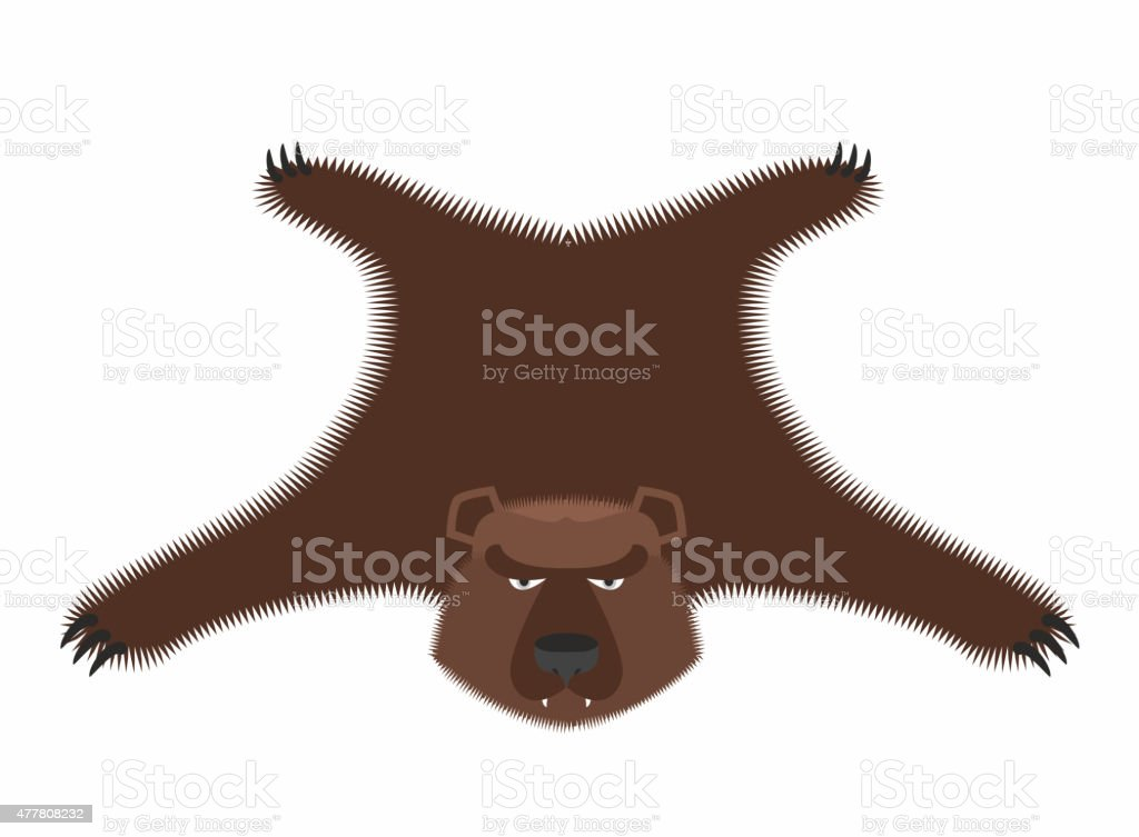 Bear pelt. Big brown bear Grizzly hide. Hunting trophy. vector art illustration