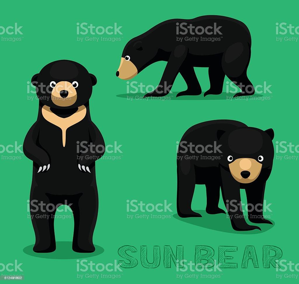 Bear Sun Bear Cartoon Vector Illustration vector art illustration