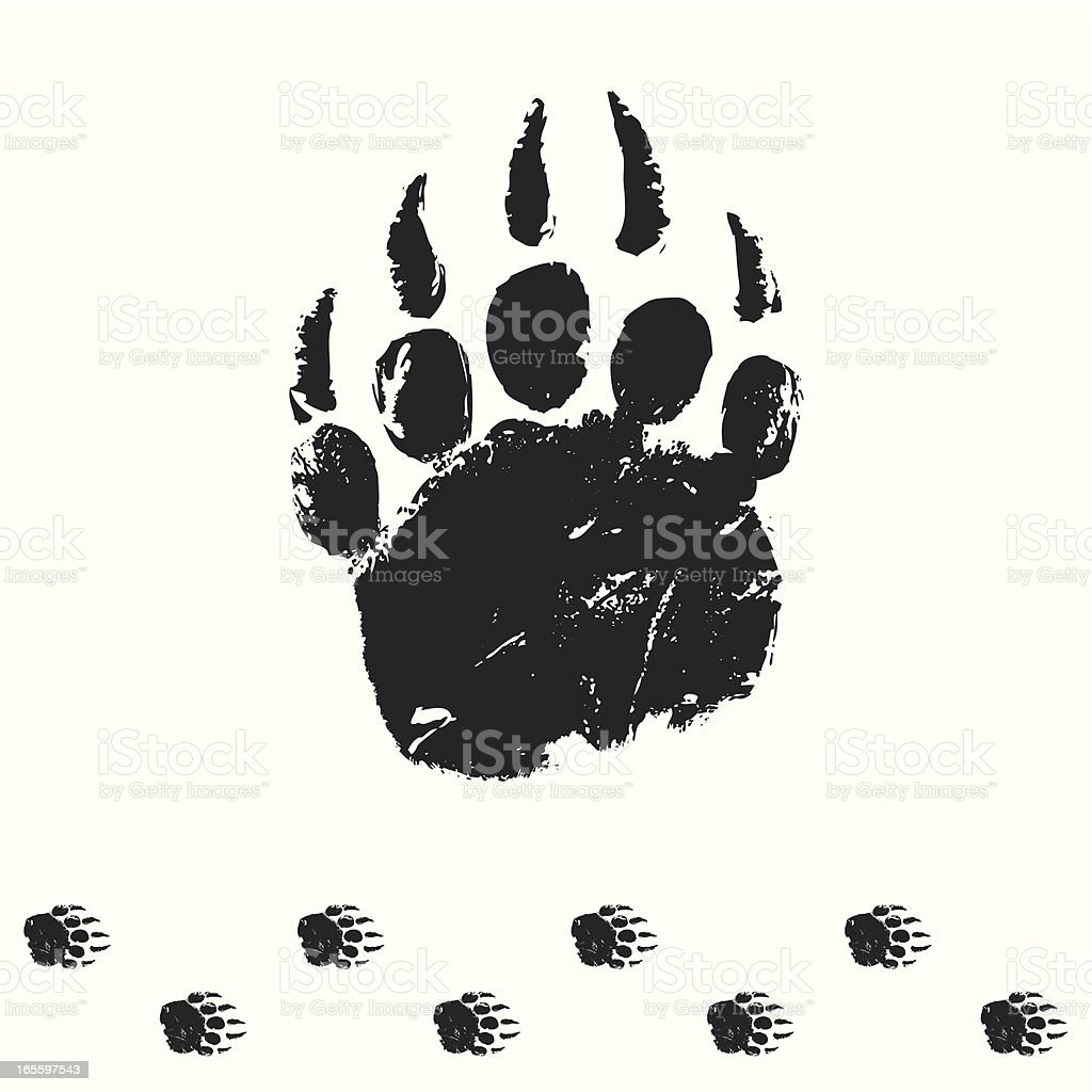 bear track vector art illustration