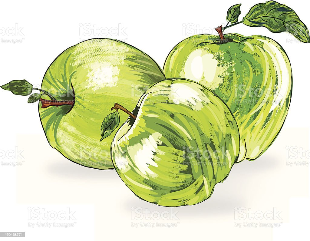 Beautiful Apple royalty-free stock vector art