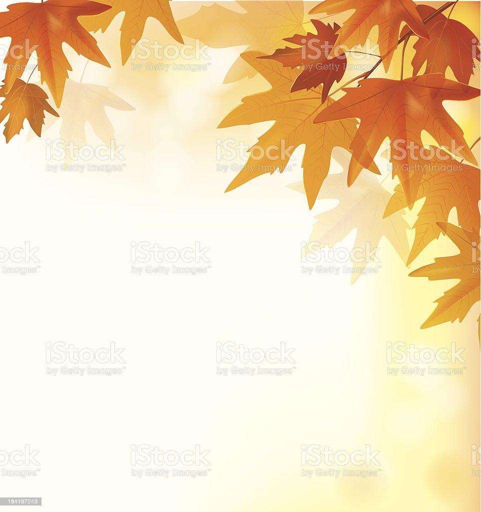 Beautiful autumn yellow background vector art illustration
