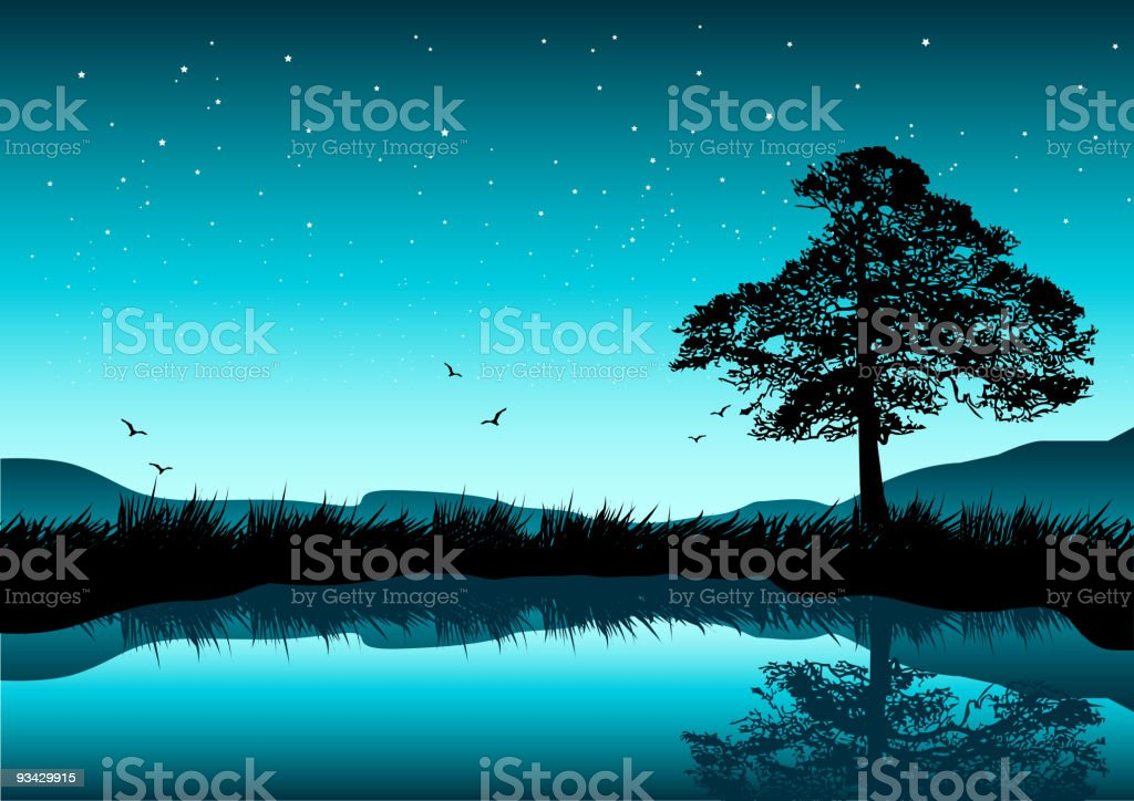 beautiful Evening vector art illustration