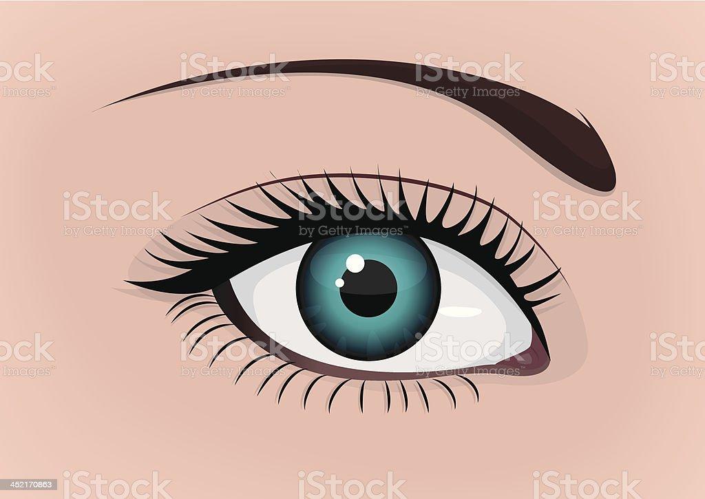 Beautiful eye vector art illustration
