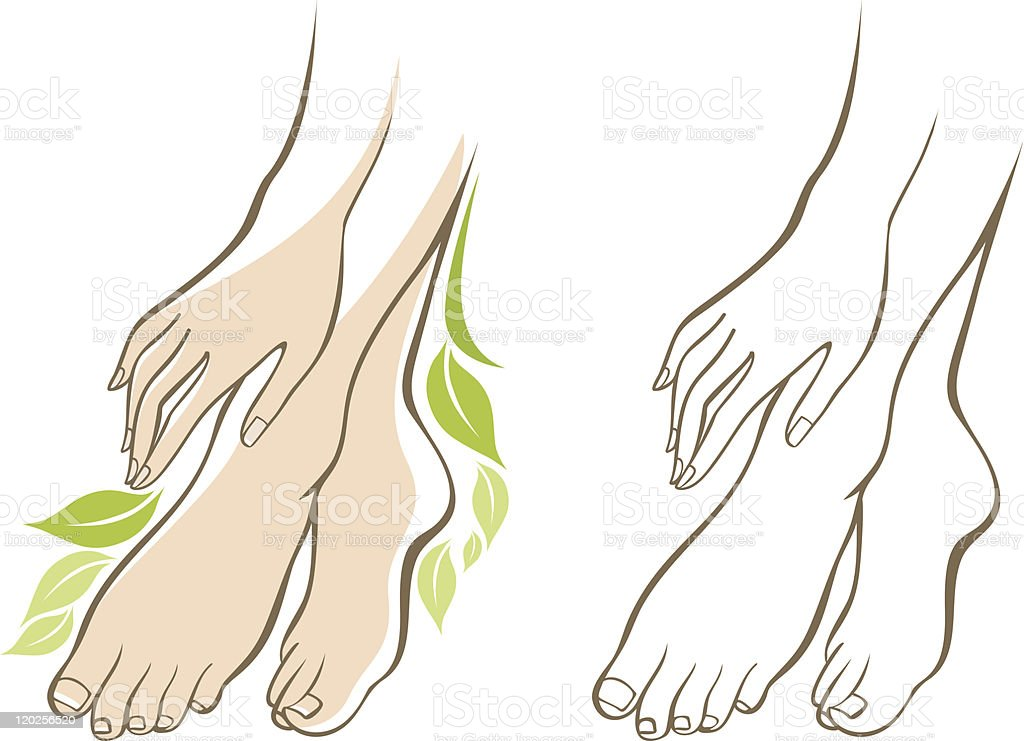 Beautiful female hands and feet vector art illustration