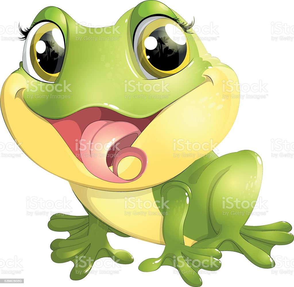 beautiful frog with big eyes vector art illustration