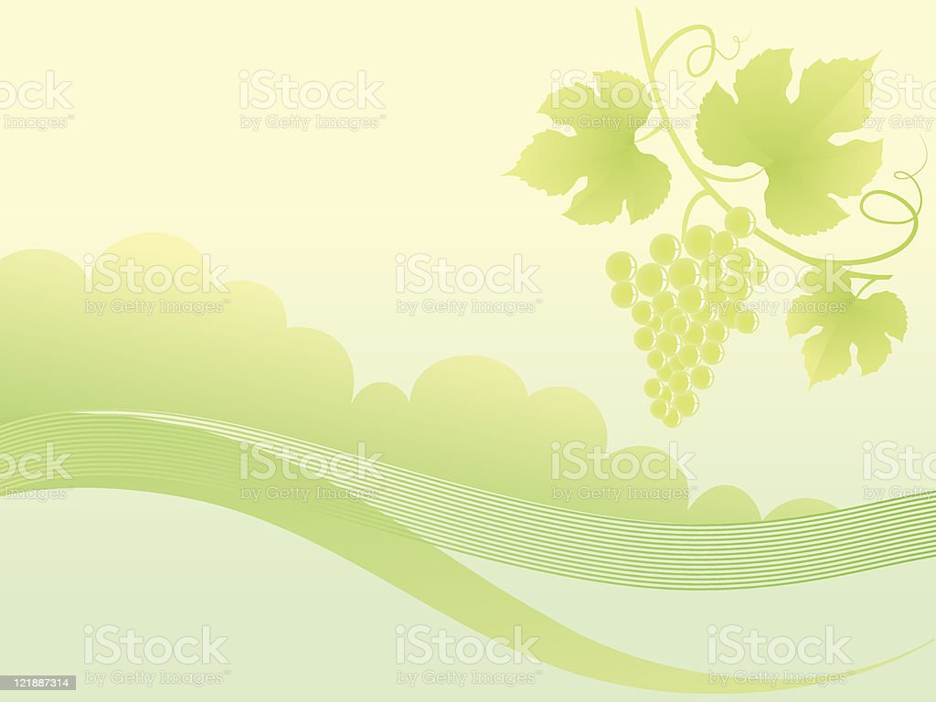 Beautiful golden grape vine background. vector art illustration