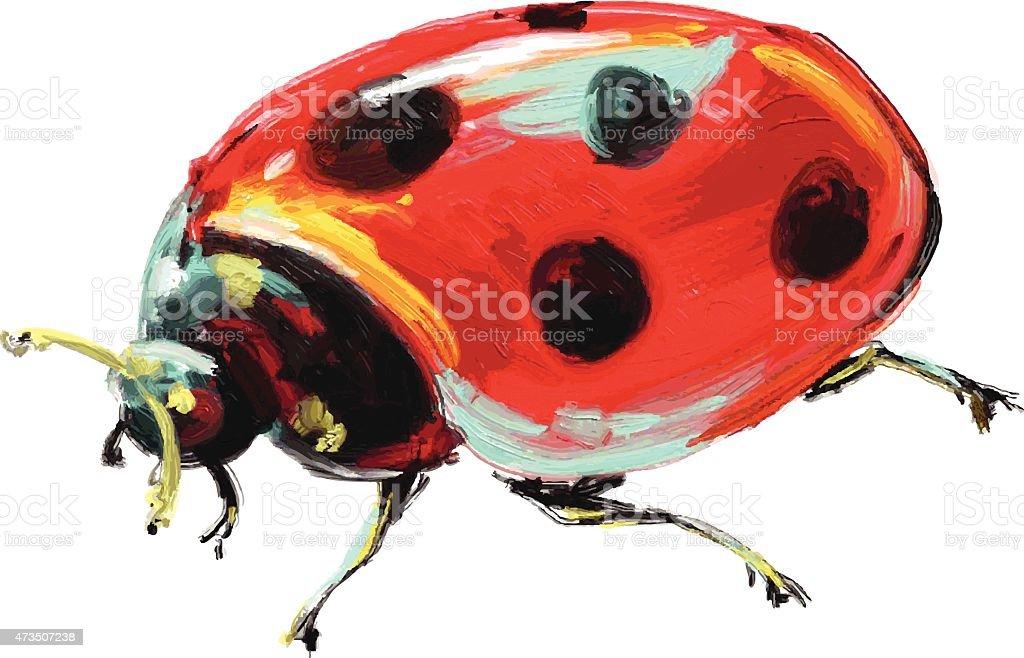 beautiful illustration isolated ladybug on a white background vector art illustration