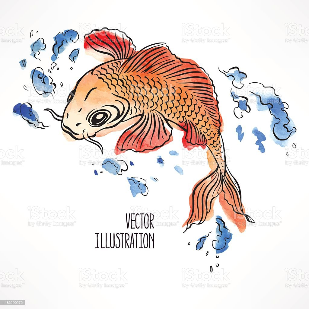 beautiful orange carp vector art illustration