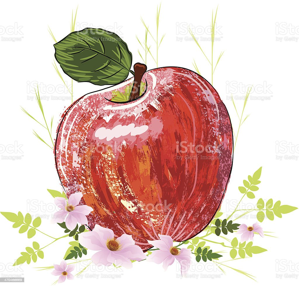 Beautiful Red Apple royalty-free stock vector art