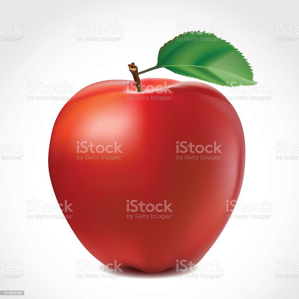 Beautiful Red apple vector art illustration