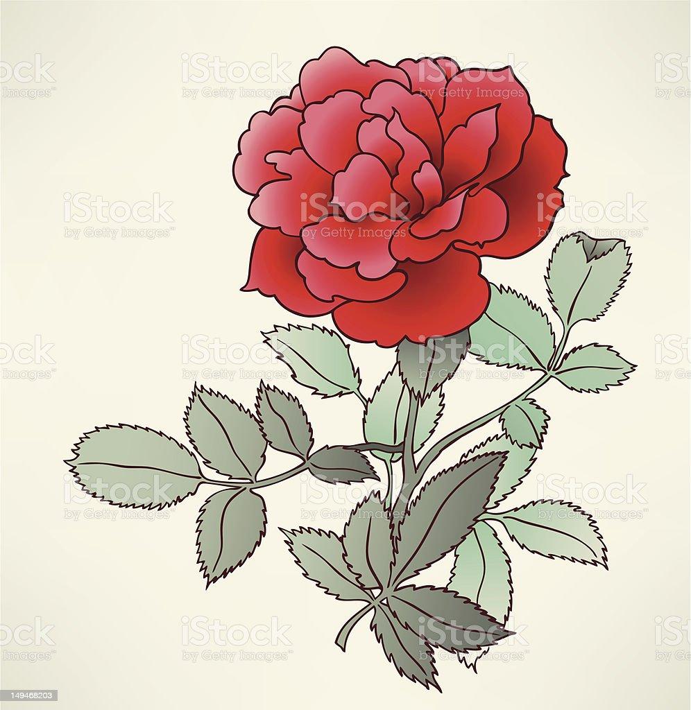 Beautiful rose close up royalty-free stock vector art