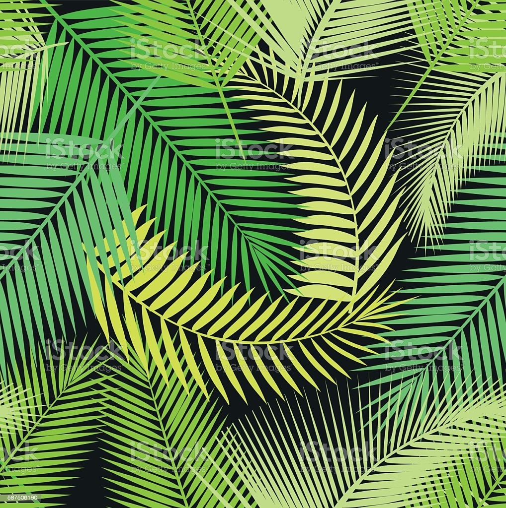 Beautiful seamless tropical jungle floral pattern background with different palm vector art illustration