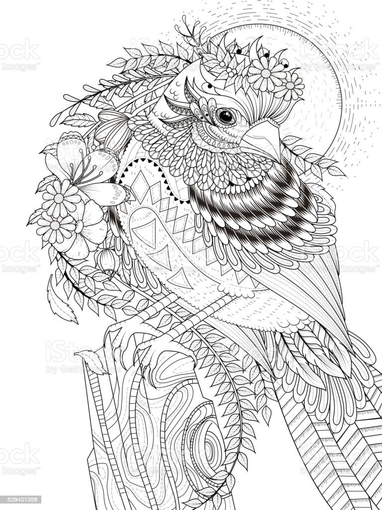beautiful sparrow coloring page stock vector art 529401358