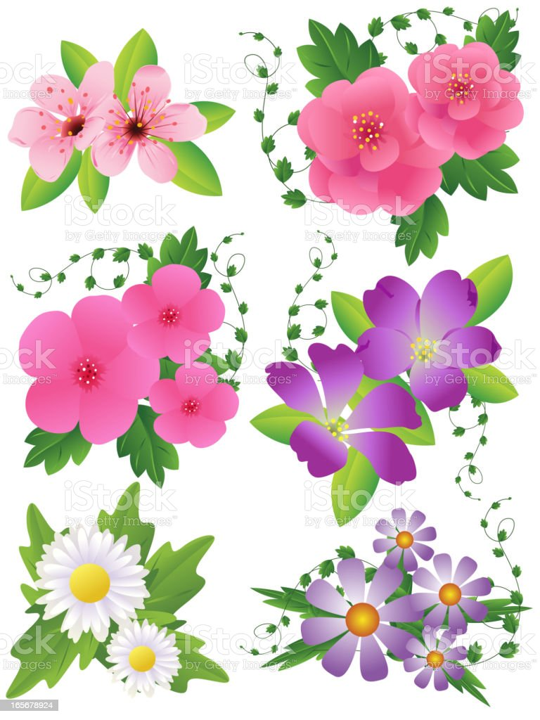 Beautiful Spring Flowers Set royalty-free stock vector art