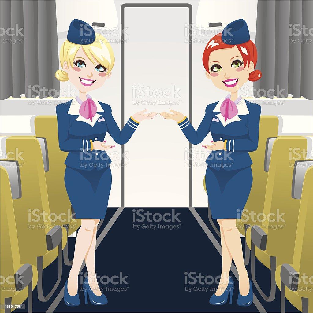 Beautiful Stewardess vector art illustration