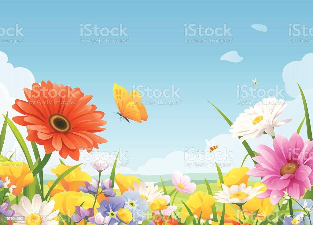 Beautiful Summer Flowers vector art illustration