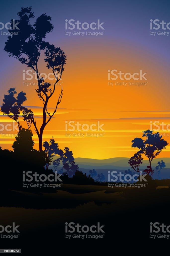 Beautiful Sunset vector art illustration