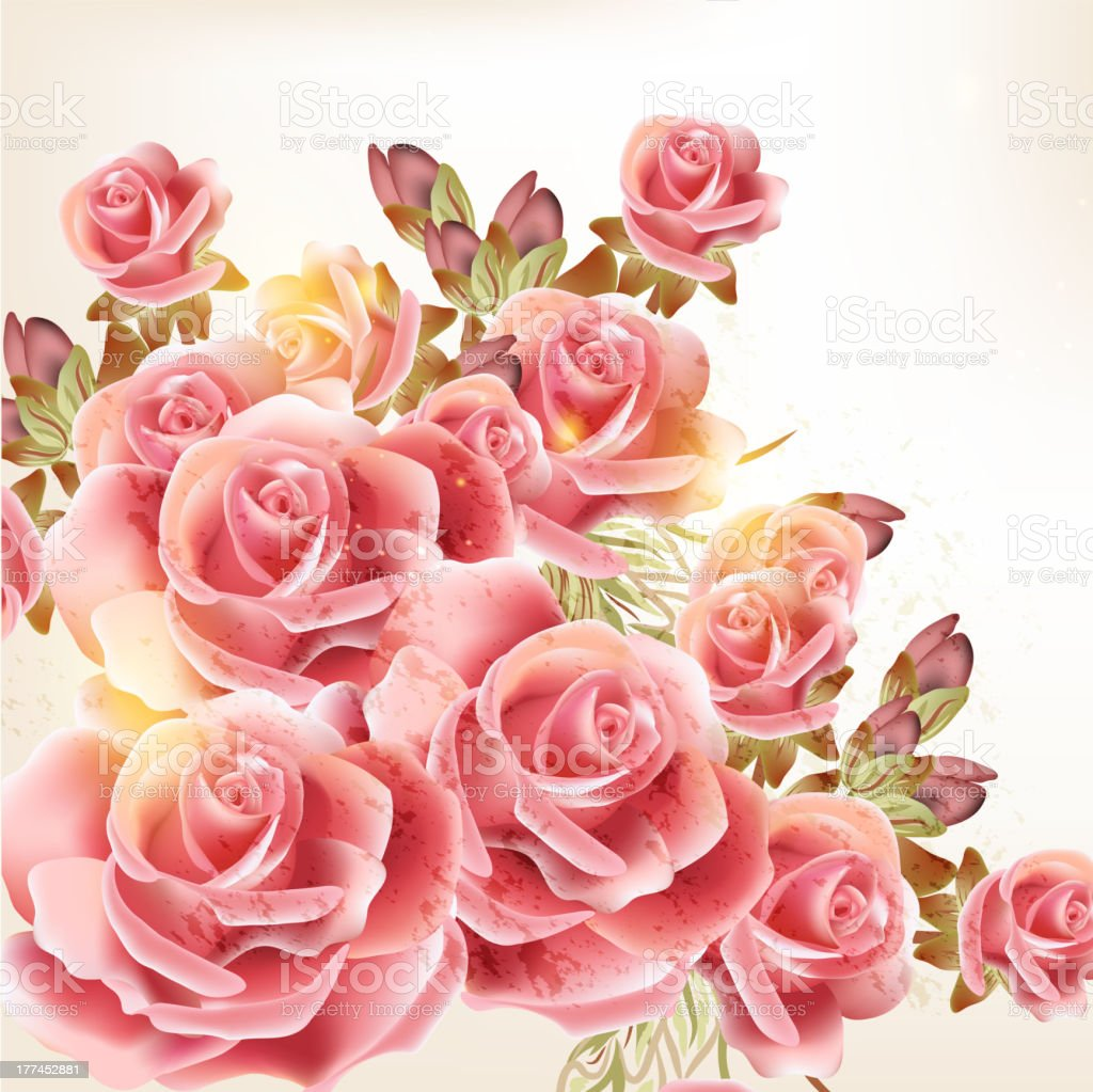 Beautiful vector background in vintage style with  rose  flowers royalty-free stock vector art