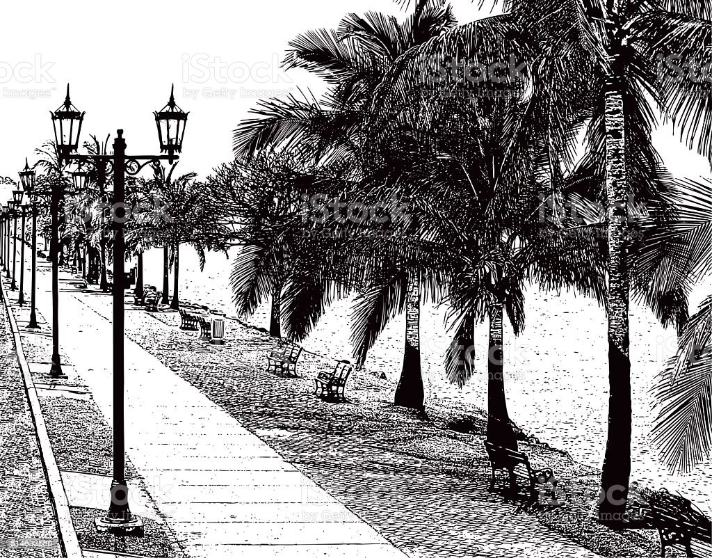 Beautiful Walking Path With Palm Trees and Water's Edge vector art illustration