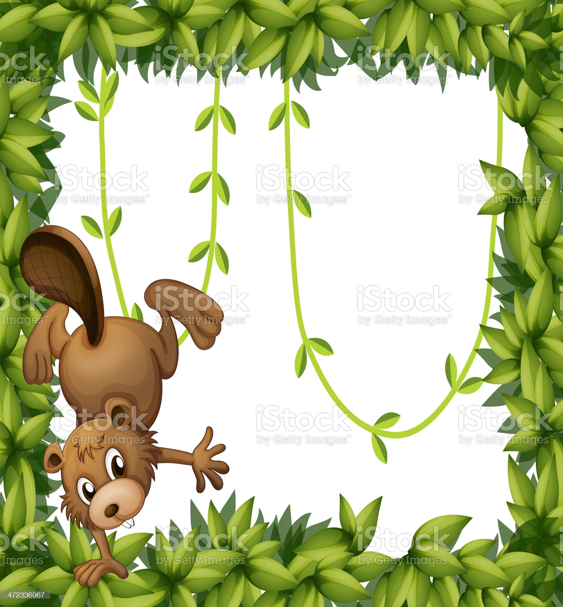 Beaver and the green leafy border royalty-free stock vector art