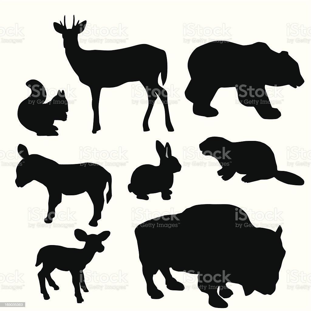 Beaver Buffalo Vector Silhouette royalty-free stock vector art
