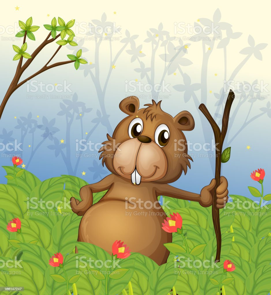 Beaver holding a wood in the jungle royalty-free stock vector art