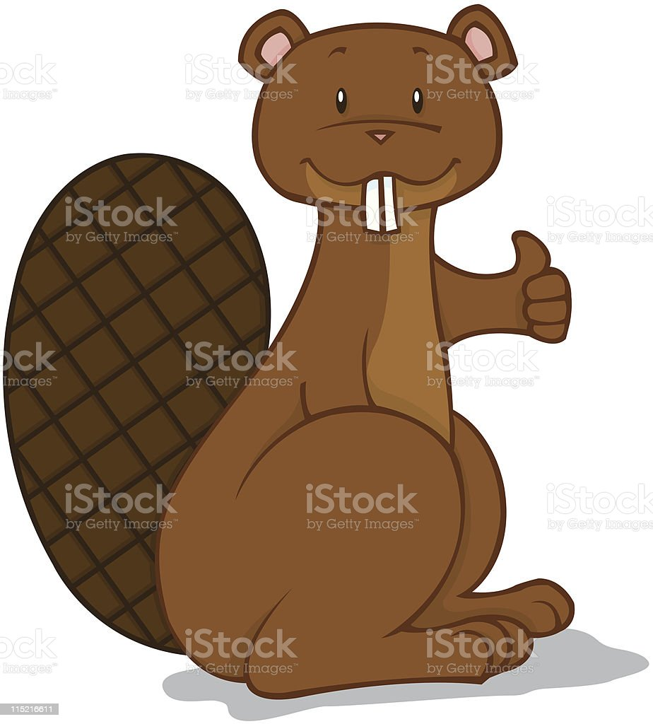 Beaver Thumbs Up royalty-free stock vector art