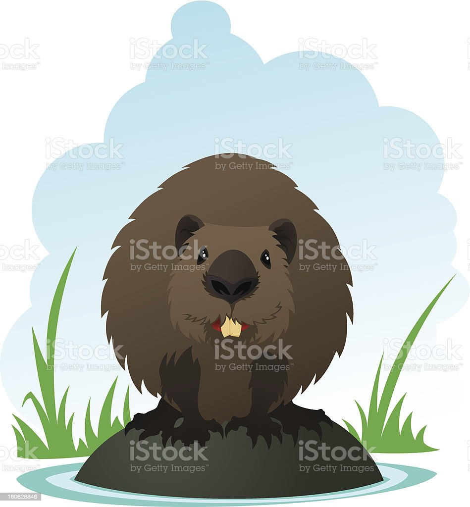 Beaver royalty-free stock vector art