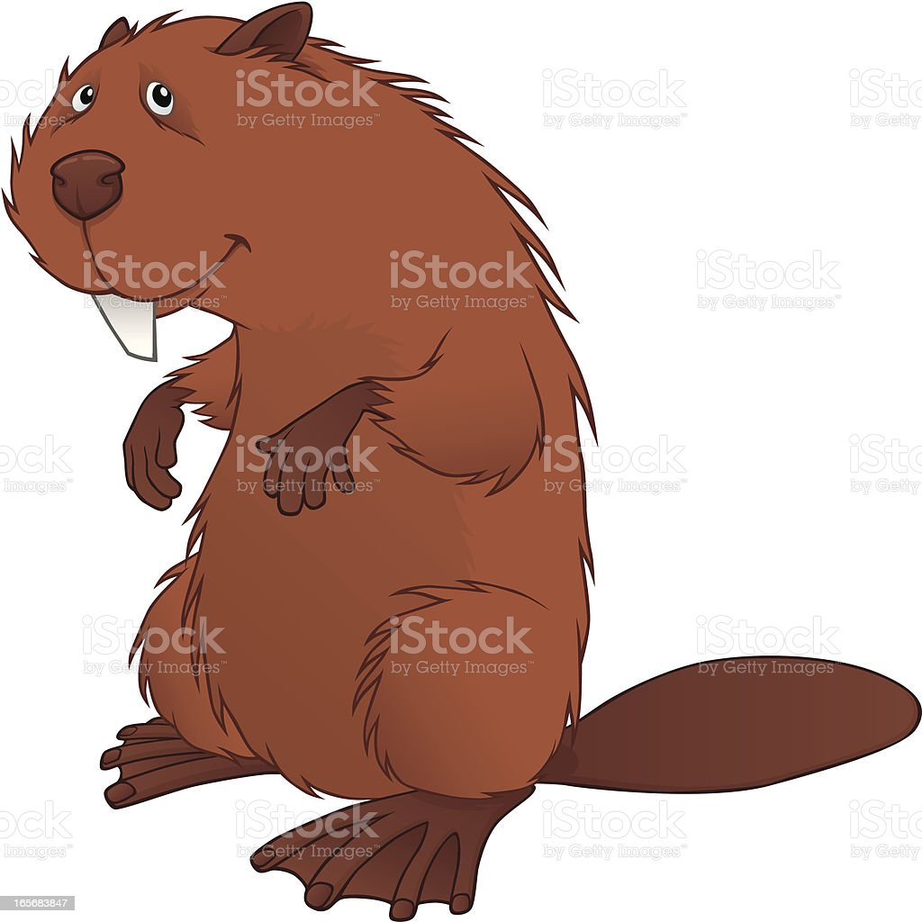 Beaver royalty-free stock vector art