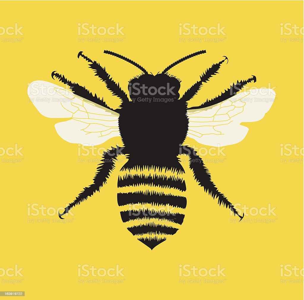 Bee illustration royalty-free stock vector art