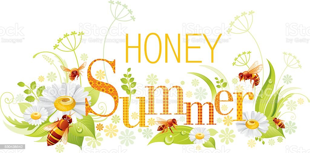 Bee Summer background with copyspace vector art illustration