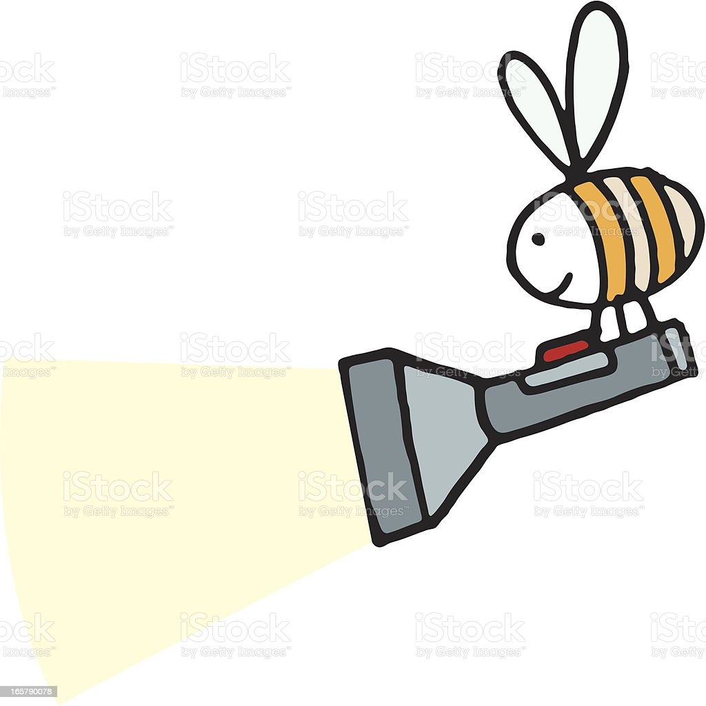 Bee with a flashlight or torch vector art illustration