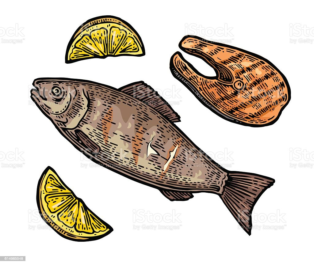 Beef grilled fish steak with lemon top view. vector art illustration