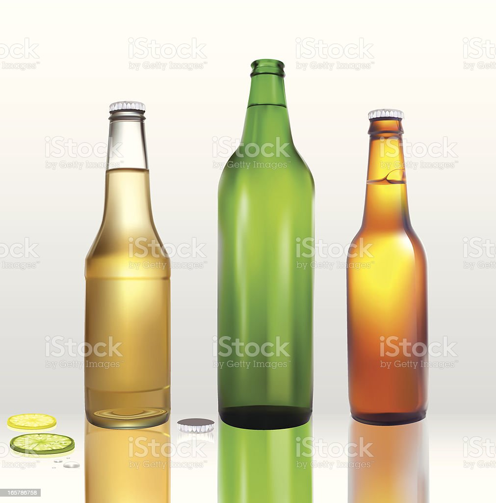 Beer Bottle Collection -Vector Illustration royalty-free stock vector art