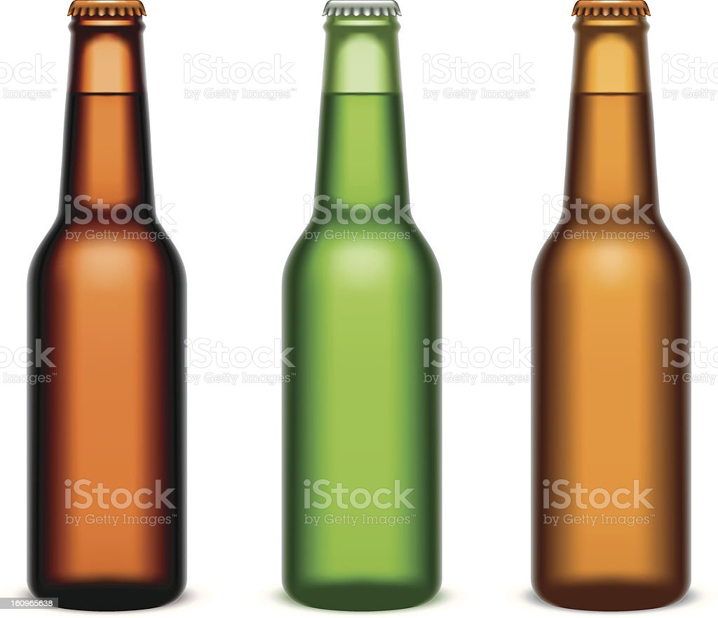 Beer bottles. vector art illustration