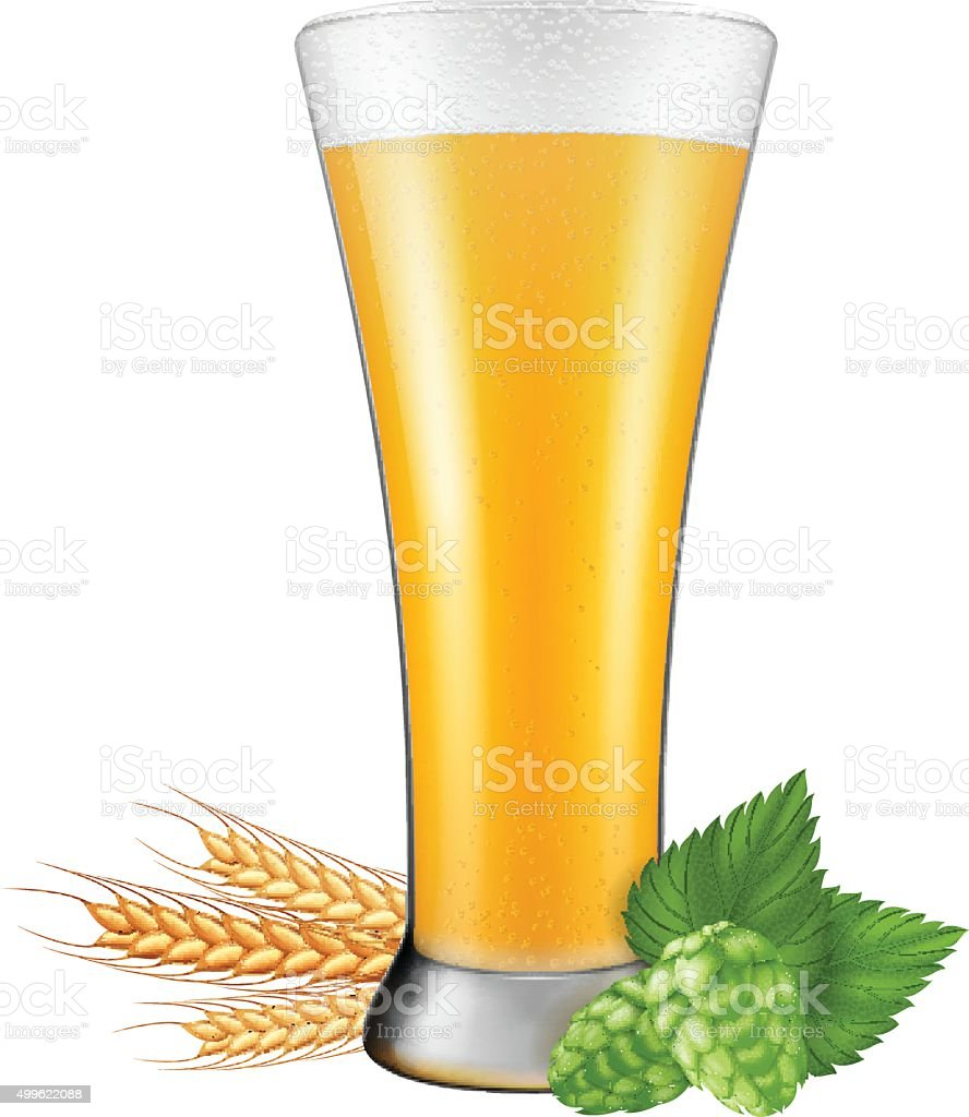 Beer glass with hops and barley. vector art illustration