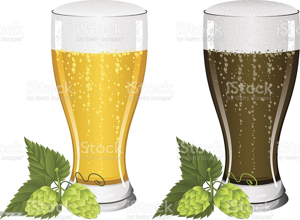 Beers and hops royalty-free stock vector art