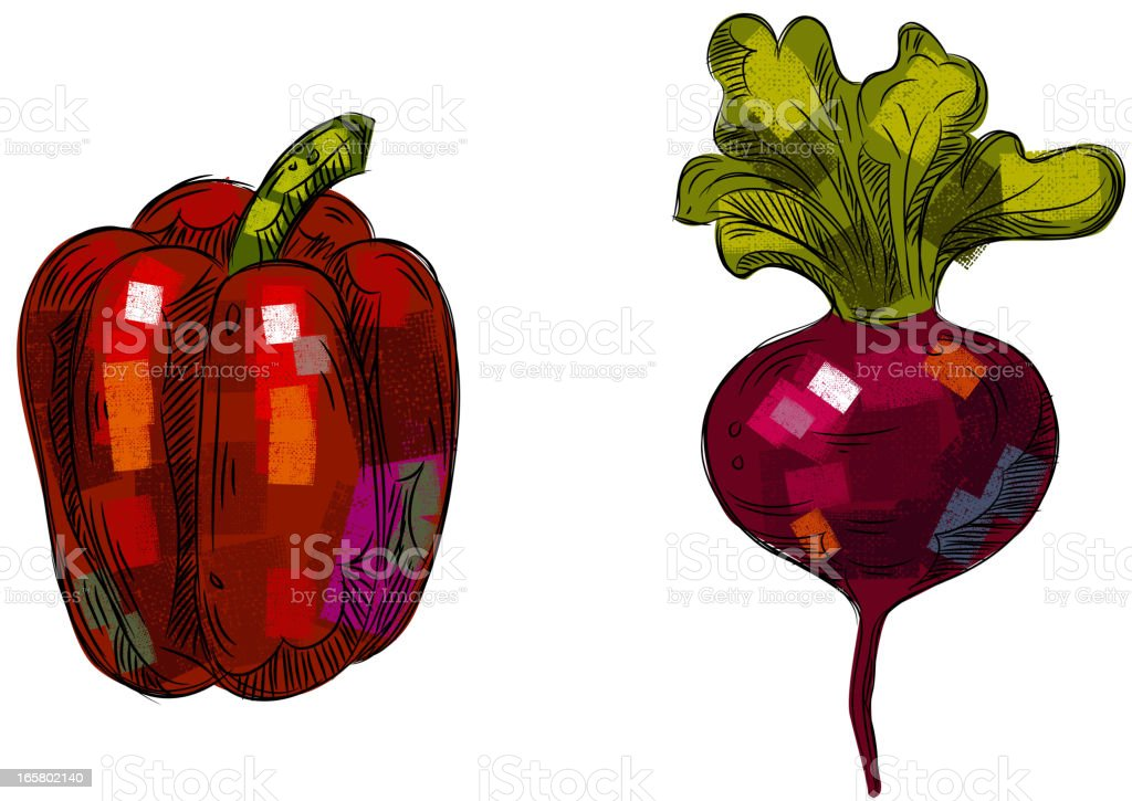 Bell Pepper and Turnip isolated on White vector art illustration