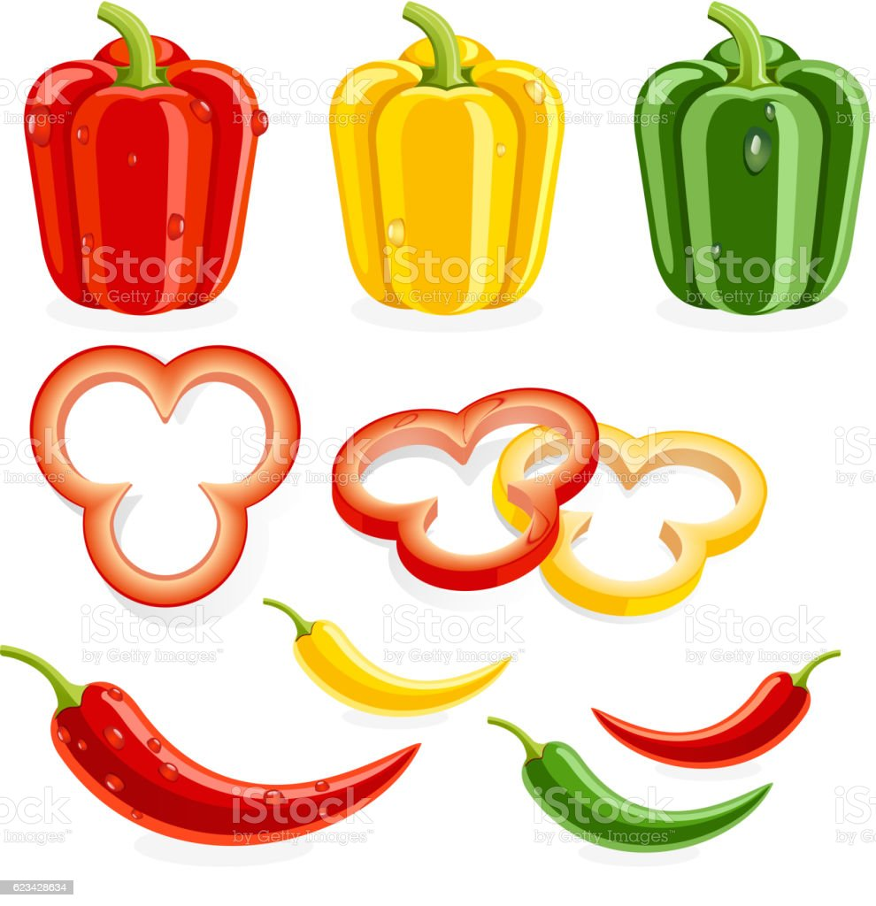 Bell peppers and chili. vector art illustration