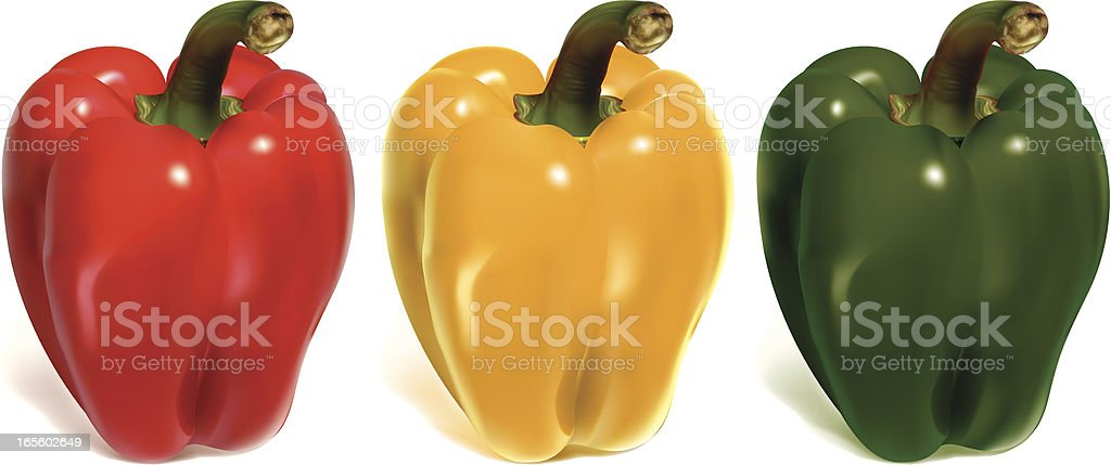 bell peppers vector art illustration