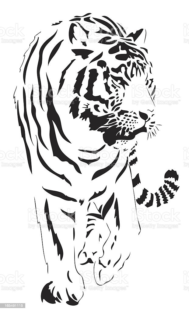Bengal Tiger illustration royalty-free stock vector art