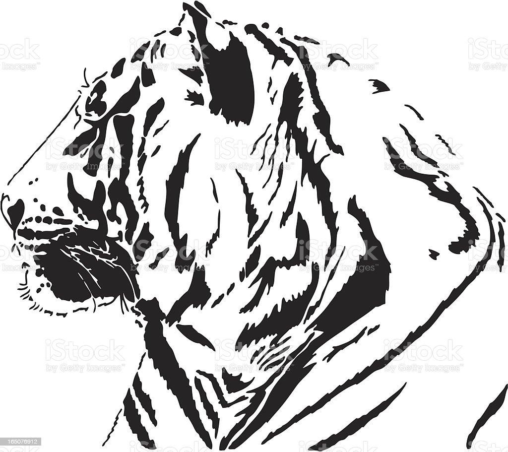 Bengal Tiger  portrait royalty-free stock vector art