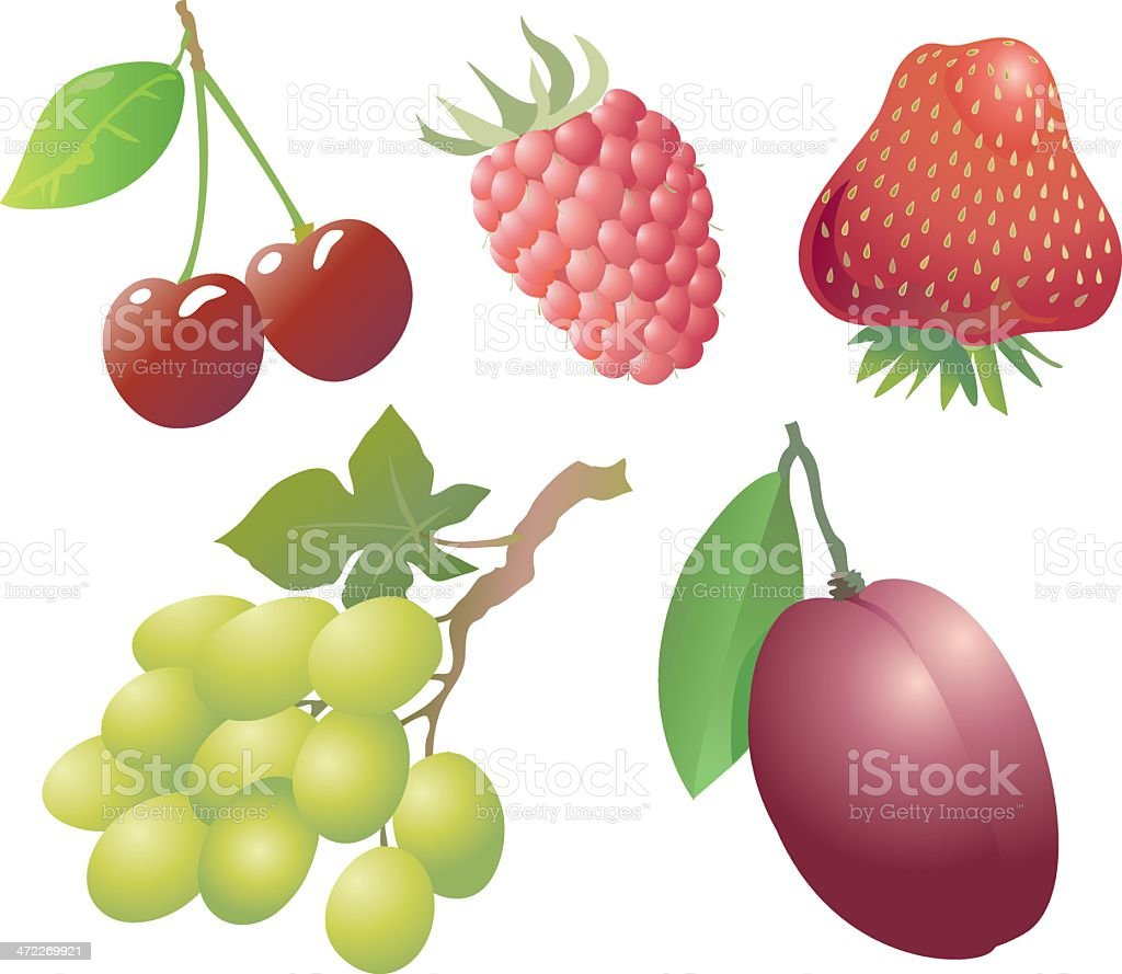 Berries, grapes and plum royalty-free stock vector art