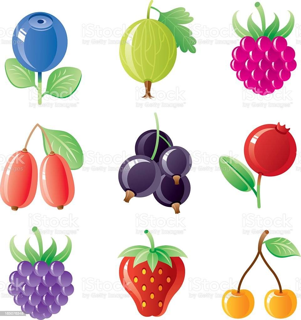 Berries icon set vector art illustration