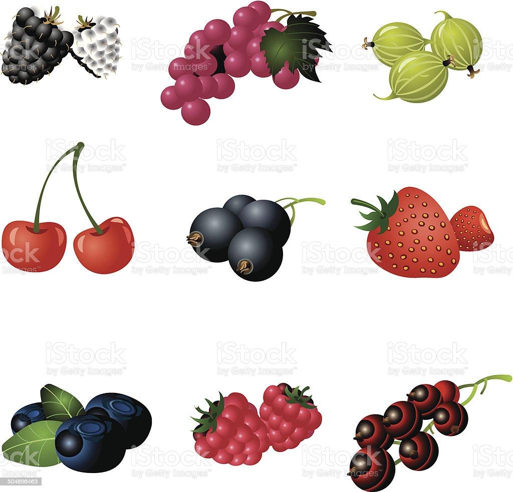 berries icon set royalty-free stock vector art