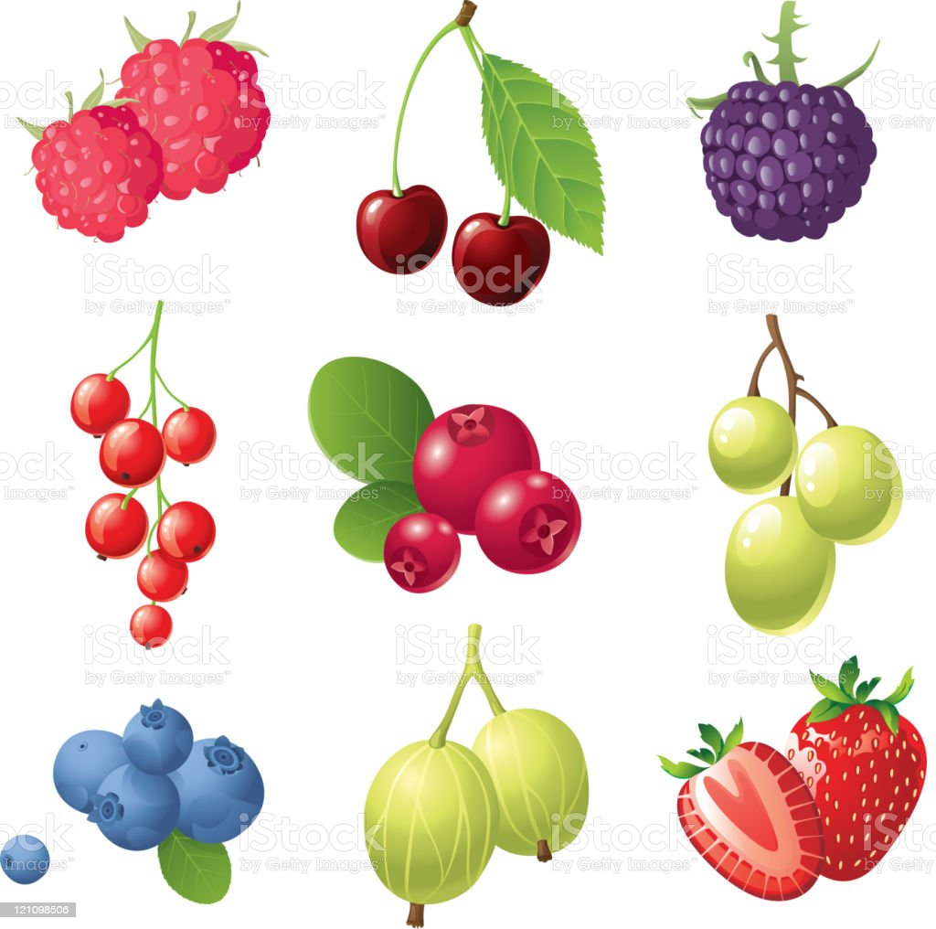 berries icons set royalty-free stock vector art