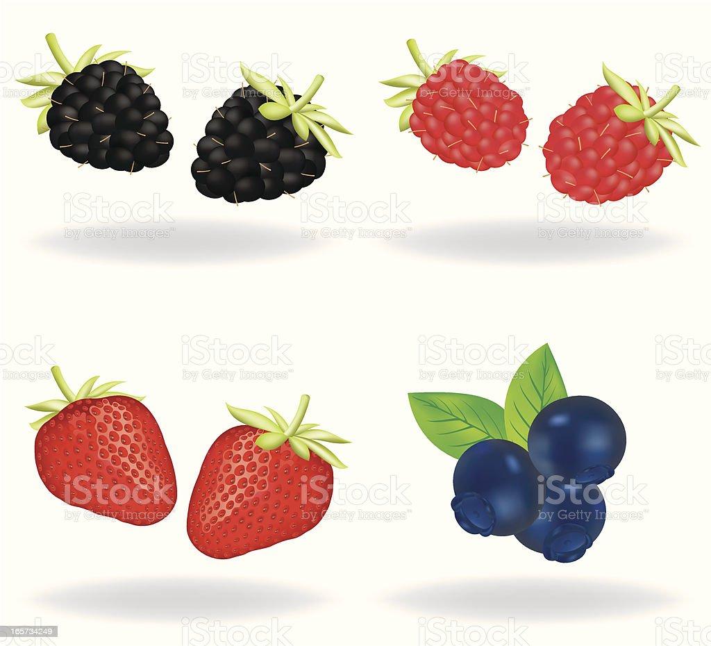 Berries royalty-free stock vector art