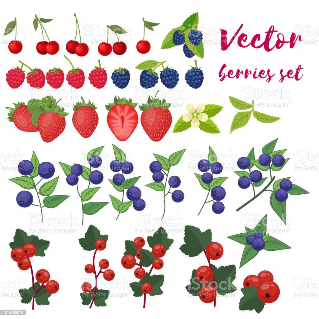 Berry Set Vector Illustration. Strawberry, Blackberry, Blueberry, Cherry, Raspberry, Red vector art illustration