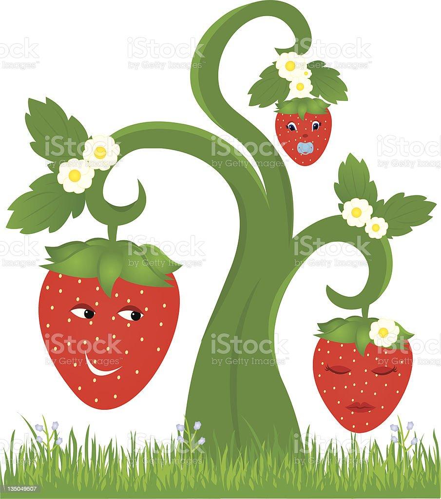 Berry Vine royalty-free stock vector art